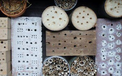 Baue ein Insektenhotel
